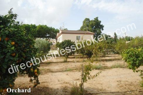 Villa-for-sale-in-Torrevieja-HBEH1073e